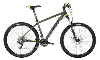 proactionbikerent MTB